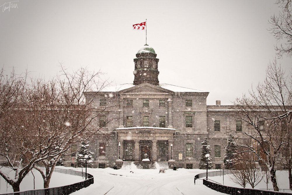 montreal-mcgill-university-winter